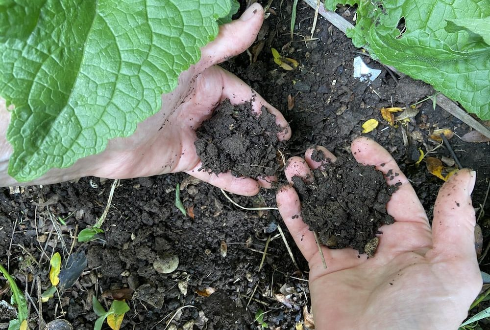 hands in the dirt